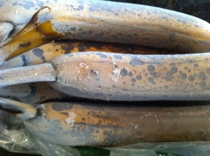 Frozen bananas.
